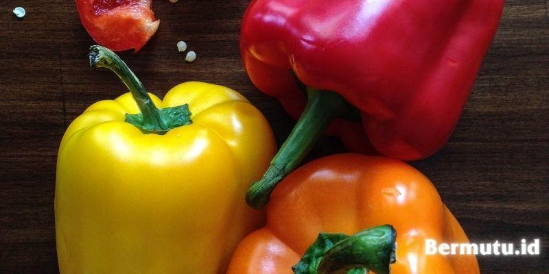 jenis tanaman yang dapat ditanam secara hidroponik - paprika