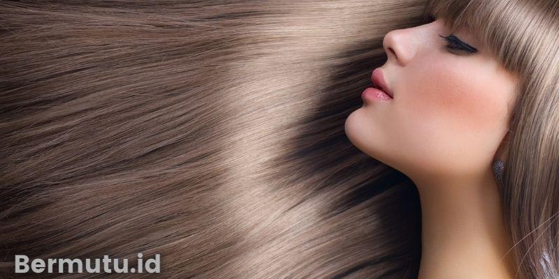 Manfaat Tanaman Paku Ekor Kuda Untuk Manusia - mengilaukan rambut