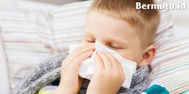 Manfaat Tanaman Catnip Untuk Kesehatan Manusia - mengurangi masalah pernafasan