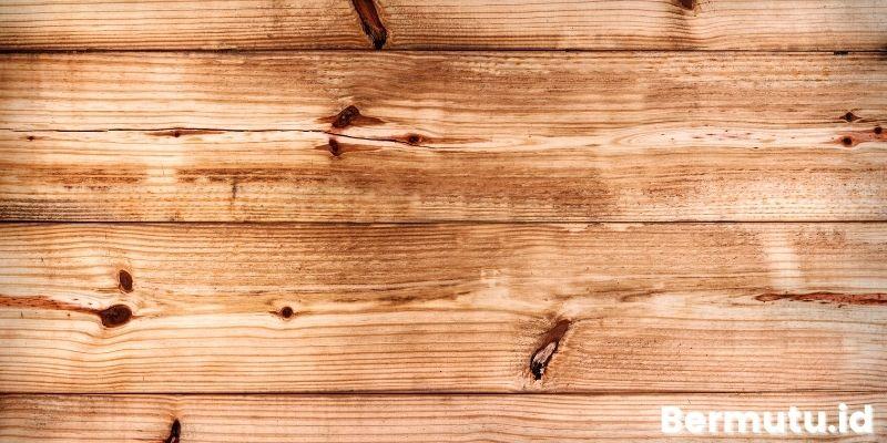 sebenarnya kayu pinus