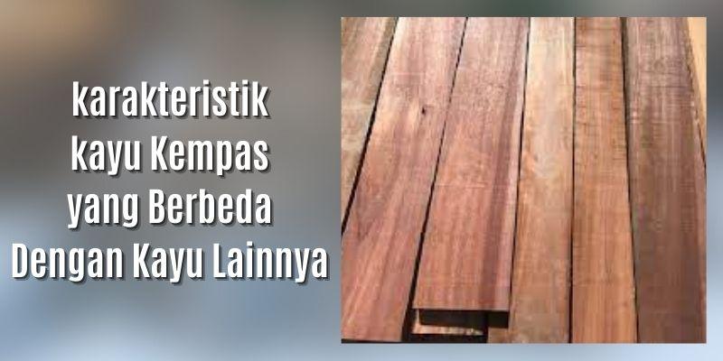 karakteristik kayu kempas