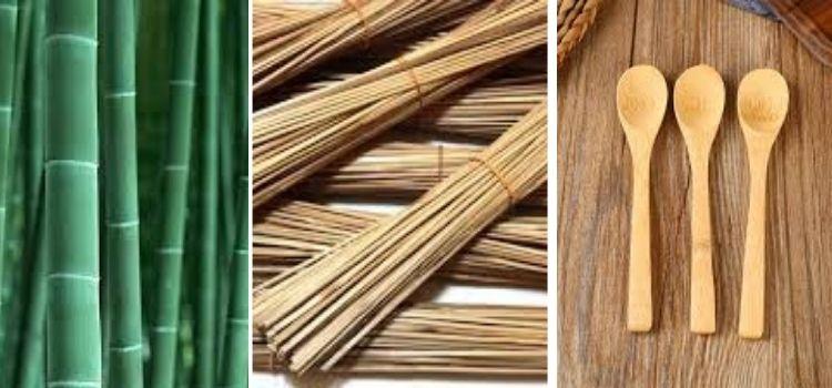jenis kayu bambu