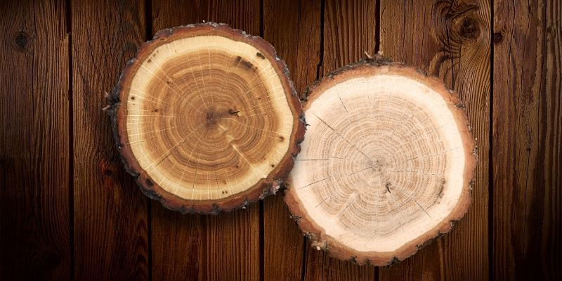 perbandingan kayu bengkirai dan jati