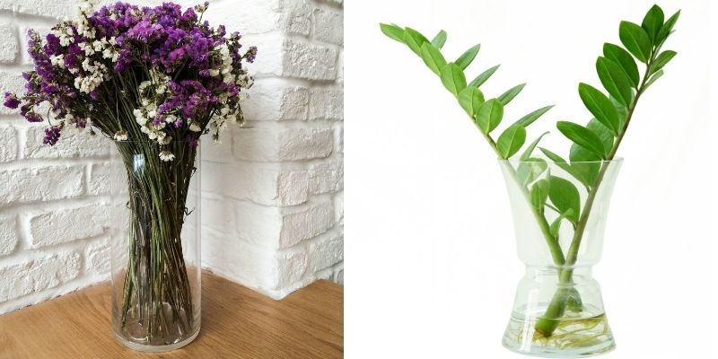 7 jenis tanaman hias yang dapat hidup dalam botol kaca