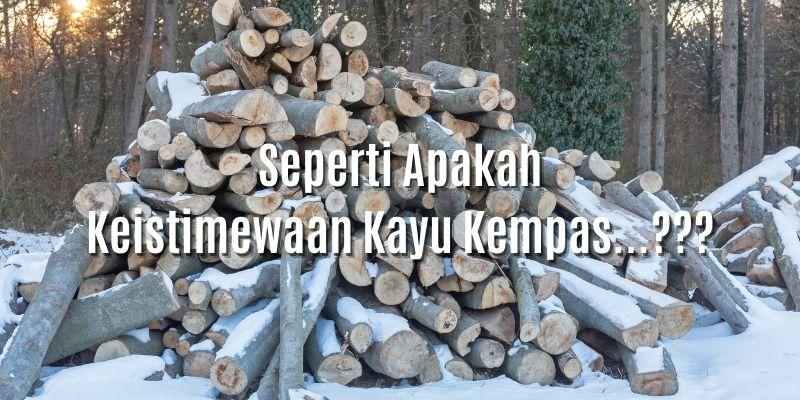 keistimewaan kayu kempas
